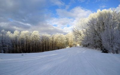 Bieszczadzka Zima