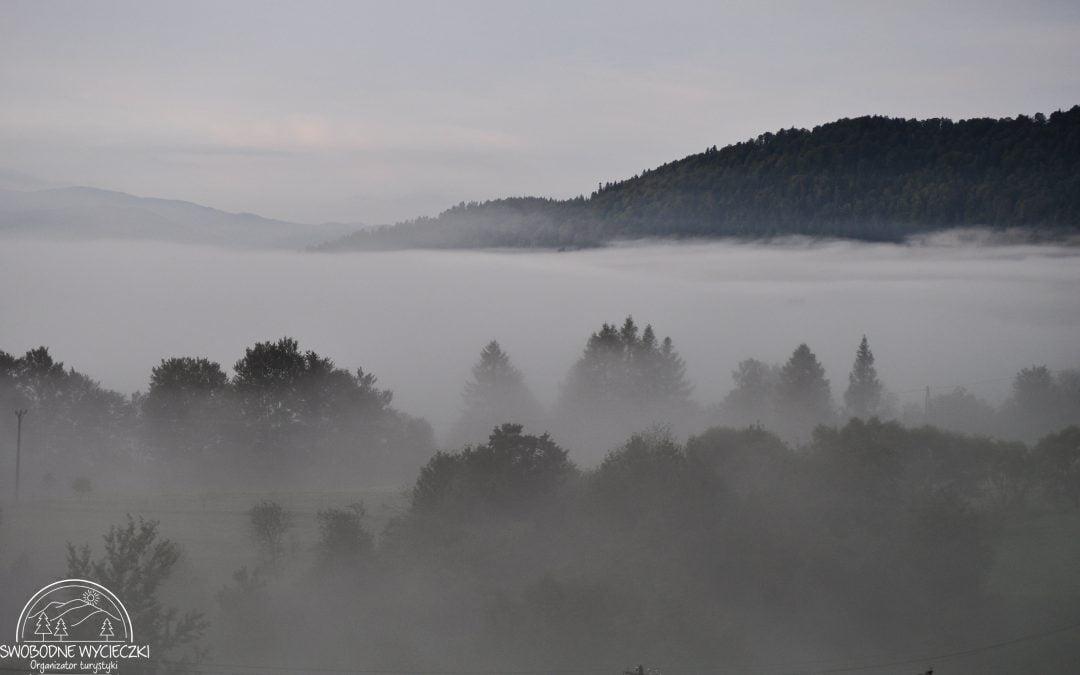 Nastał czas mglistych poranków …
